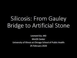 Dr Go Silicosis presentation